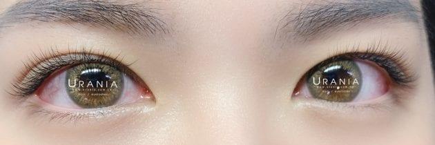 ♥ 艾芙蒂亞睫毛作品集 2020-08