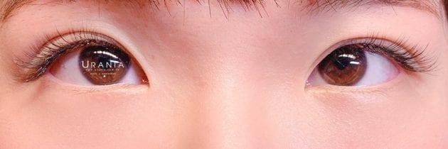 ♥ 2020艾芙蒂亞日式睫毛9月作品